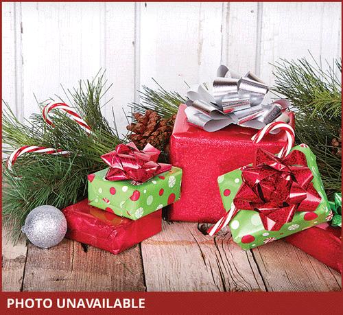 Johnson Family - Christmas Family Adoption Foundation